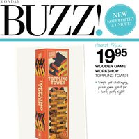 Home Outfitters - Buzz! Flyer