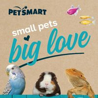 PetSmart - Small Pets, Big Love Flyer
