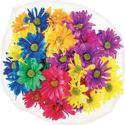 PC Market Bouquet Crazy Daisies - $14.00